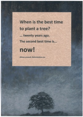 """When is the best time to plant a tree?"""