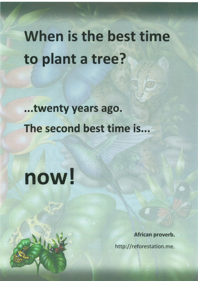 """The best time to plant a tree. Background paper: Cumberland """"Jungle Design""""."""