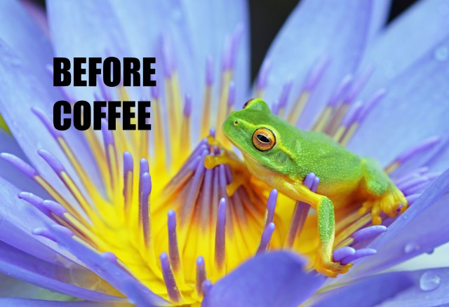 """Before Coffee"" poster by David Clode."