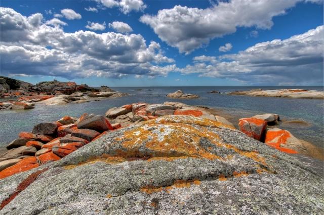Tasmanian seascape. Photo by Bryan Clode.