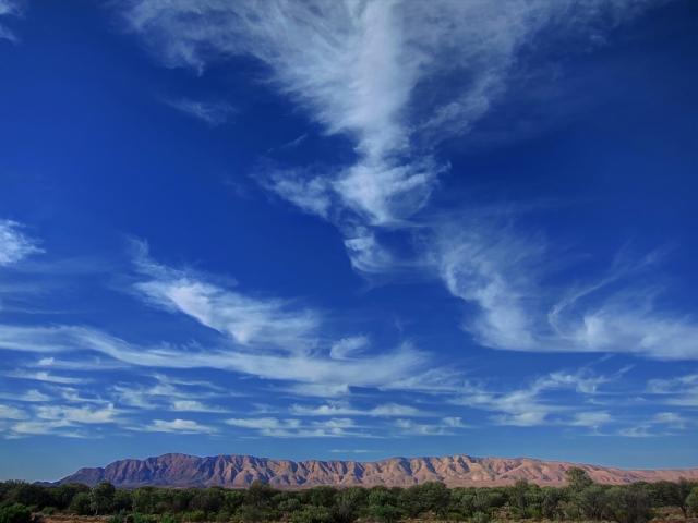 Fair weather, Papunya. Photo: Bryan Clode.