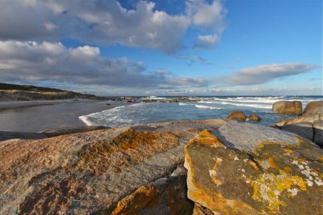 Seascape tasmania. Photo: Bryan Clode.