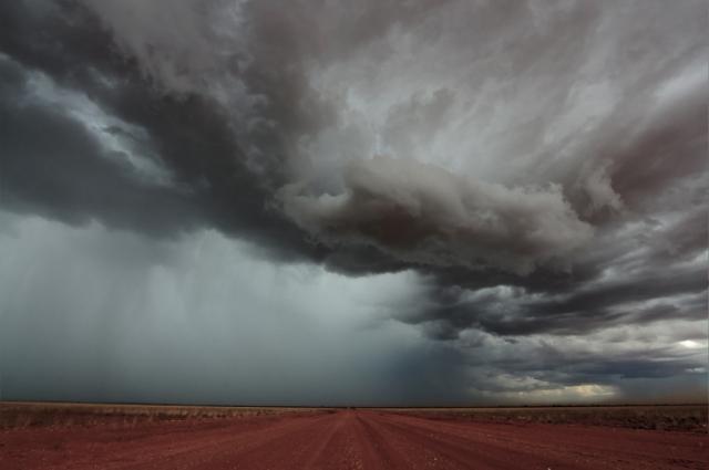 Precious rain. Photo: Bryan Clode.