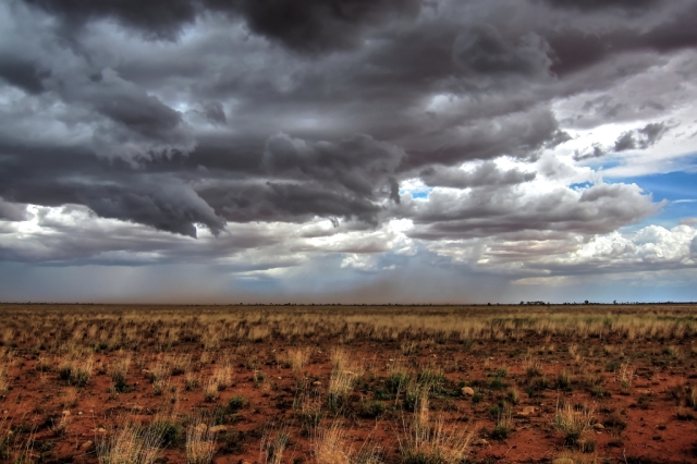 In the desert, you can get rain storms, and at the same time, dust storms. Photo: Bryan Clode.