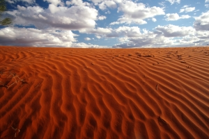 Red sand dune, Australian Outback. Photo: Bryan Clode.