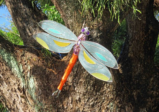 Dragonfly sculpture on a rain tree, about 1.5m across, Cairns Esplanande Lagoon. Photo: David Clode.