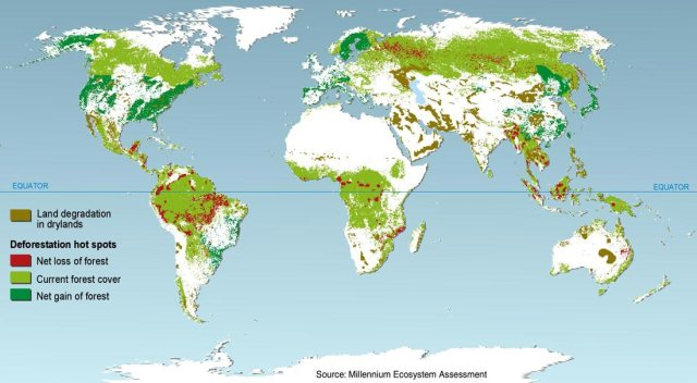 Deforestation and reforestation map. Not all bad news. Photo: Millennium ecosystem assessment.