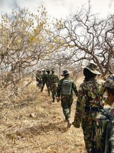 Black Mamba anti poaching unit on patrol in South Africa. The unit is made up of mostly very brave women. However, the woodland camouflage is too green and too dark. Photo: www.independent.co.uk.
