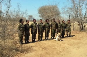 The camouflage uniforms worn by most anti-poaching units is designed for wet forests, and is too dark and green for the dry,open grassy woodland common in many national parks, especially in Africa and India.