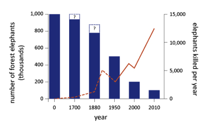 African forest Elephant decline. Graph: animals.oreilly.com.
