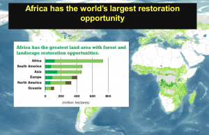 Ecological restoration opportunities - potential environmental,economic and employment boost.