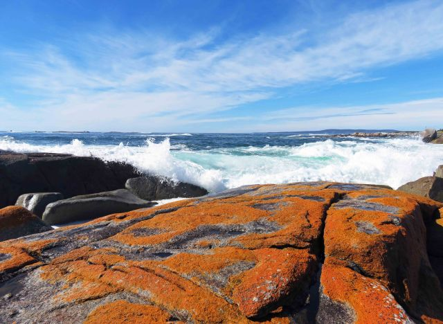 The Gardens area, Bay of Fires, Tasmania. Photo: David Clode.
