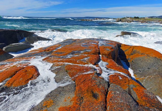 Unusually wils seas, The Gardens area, Bay of Fires. Photo: David Clode.