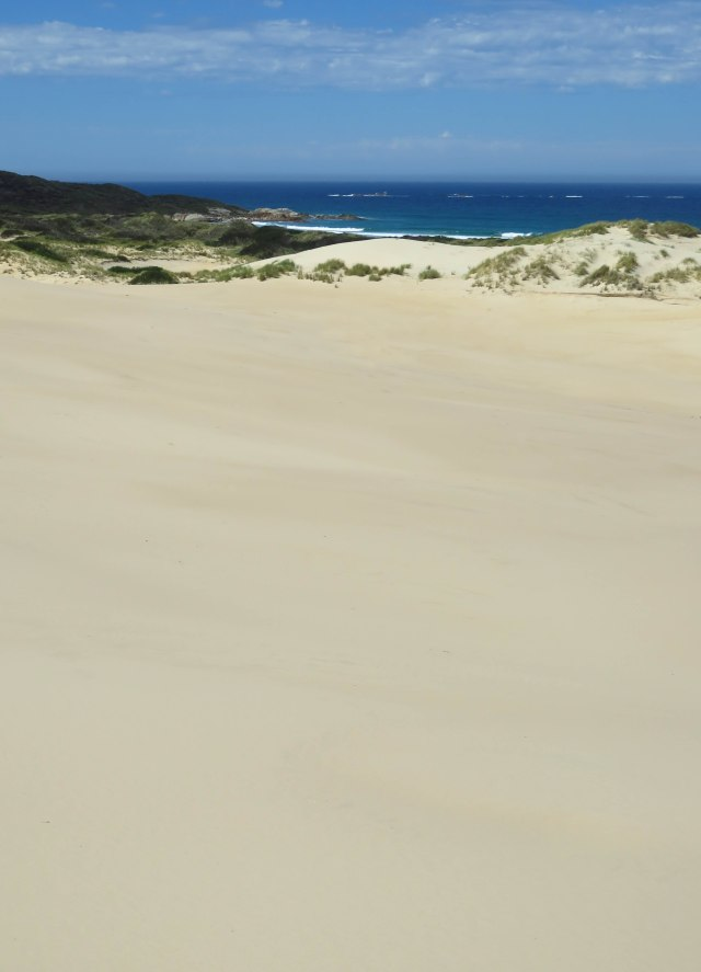 Peron Dunes. Photo: David Clode.