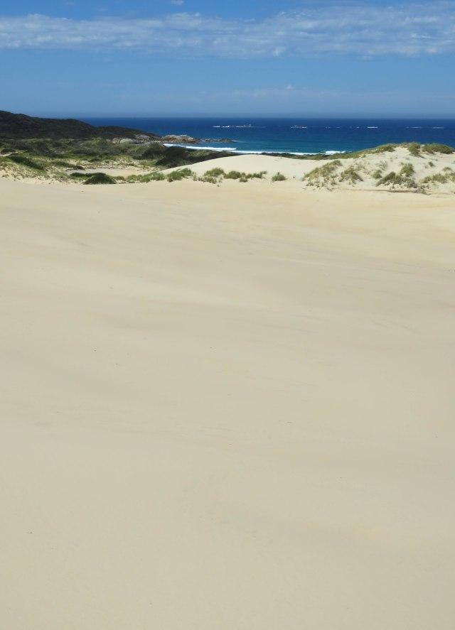 Peron Dunes. Photo: David Clode.