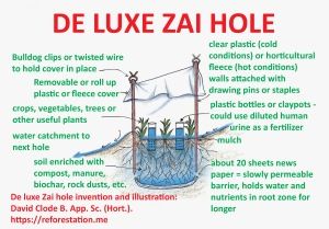 de luxe zai hole diagram  zai holes can increase the growth of grains,  vegetables and trees, especially in compacted infertile soils in drier  climates or